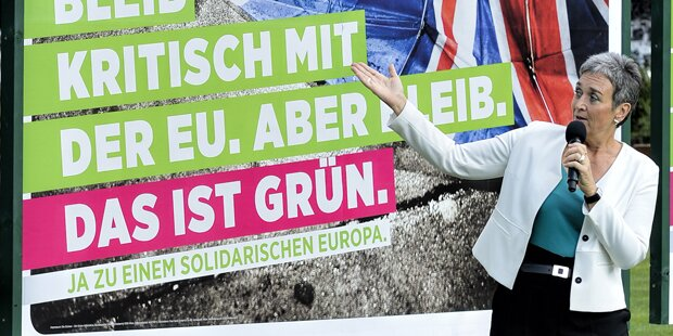 Grünen wollen mit trotzigen Plakaten punkten