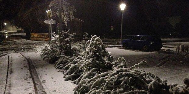 Blitz-Winter: 40cm Schnee
