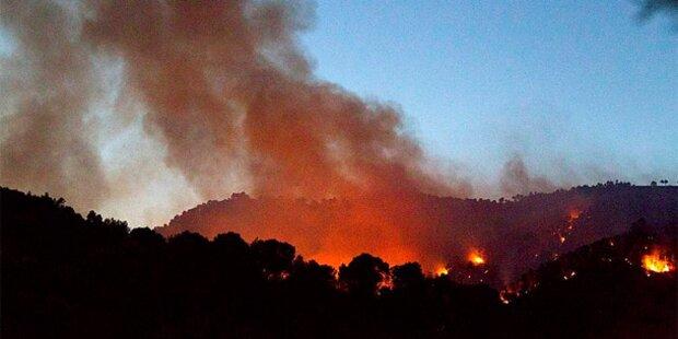 Wie groß ist die Gefahr von Waldbränden?