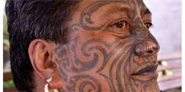 Polizei hebt Maori-Terrorcamp aus