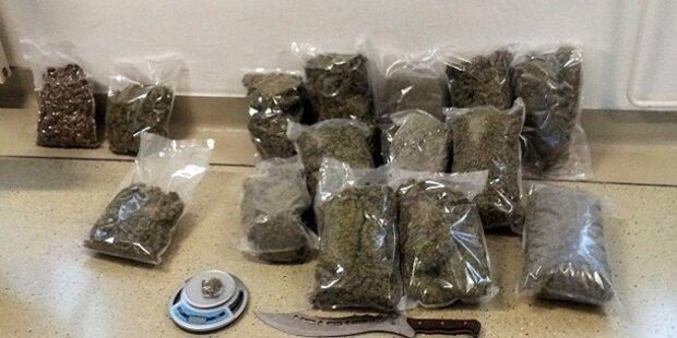 8 Kilogramm Marihuana sichergestellt