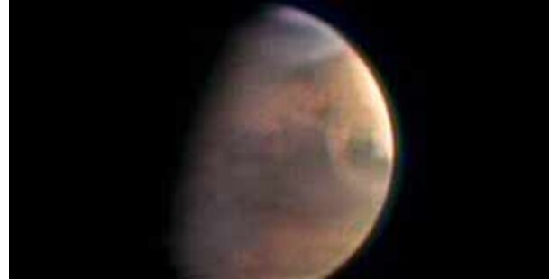 Stammen die Menschen vom Mars?