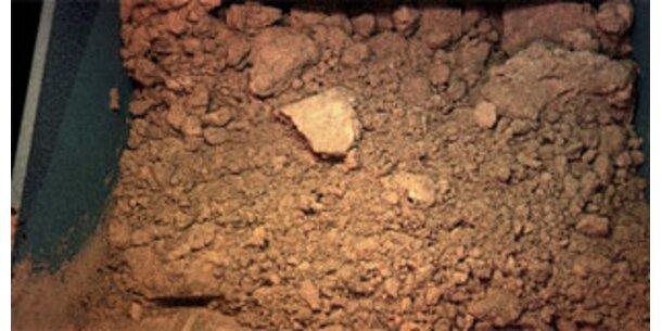 Probleme mit erster Bodenprobe vom Mars