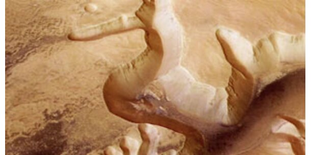 Leben auf dem Mars trotz Chemie-Fundes möglich