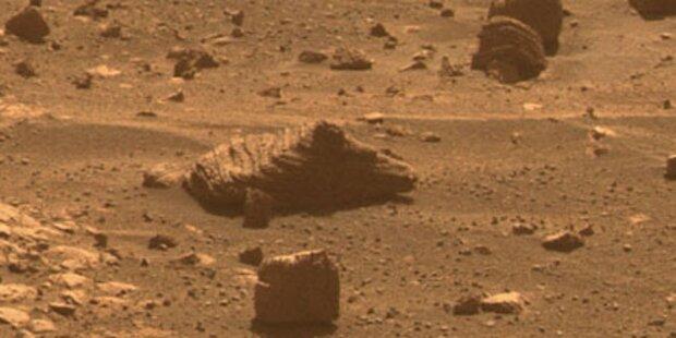 NASA: Leben auf dem Mars wahrscheinlich