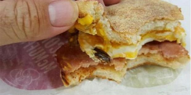 Mc Muffin Kakerlake