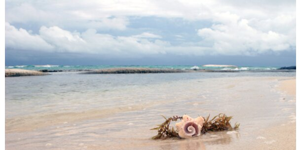Naturschutzunion fordert mehr Meeres-Schutz