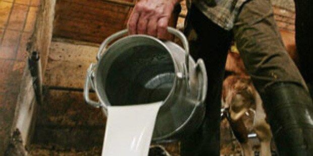 Milchpreis bestimmt Lebensqualität