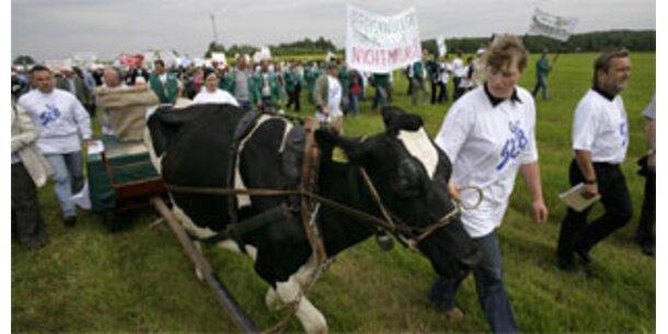 Deutsche Milchbauern liefern aus Protest nicht