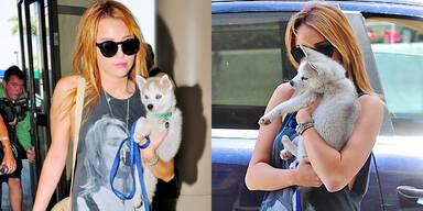 Miley Cyrus: Verliebt in ihr Baby