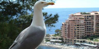 Monaco soll ins Meer wachsen