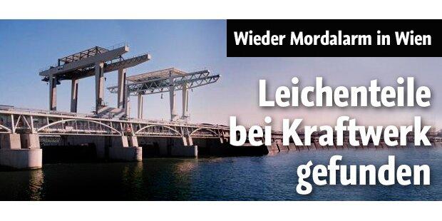 Leichenfund bei Wiener Kraftwerk Freudenau