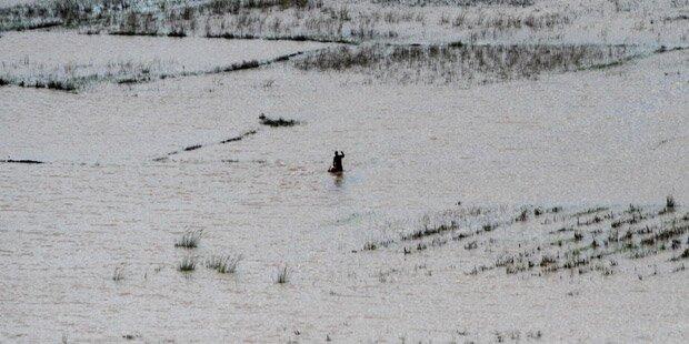 150 Tote bei Überschwemmungen in Mosambik