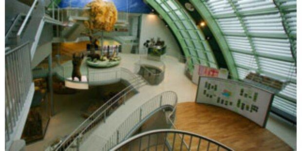 5 Jahre Landesmuseum NÖ - Eine Bilanz