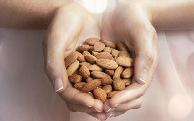 Gesunde Nüsse: Guter Kern in harter Schale