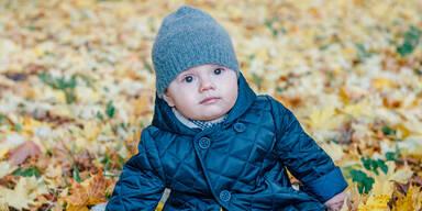 Prinz Oscar im Laub