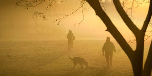 Wochenende verschwindet im Nebel