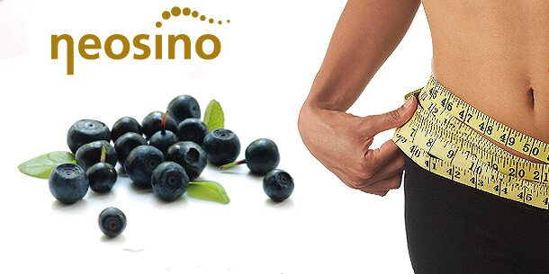omega 3 6 9 fettsäuren wirkung