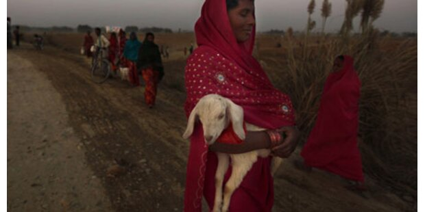 Nepal startet riesiges Tieropfer-Fest