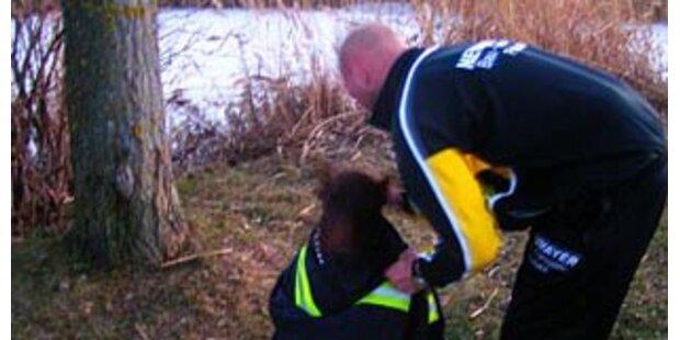 Mann brach mit Hund in den Neusiedler See ein