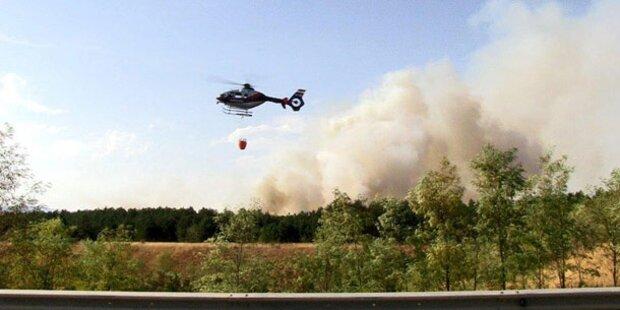 Wind heizt Waldbrand erneut an