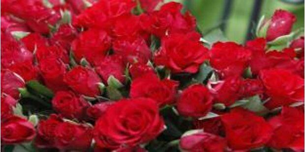 Filmtipps zum Valentinstag: romantisch, traurig, skurril