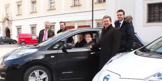 Diözese Linz wird 2014 ganz öko