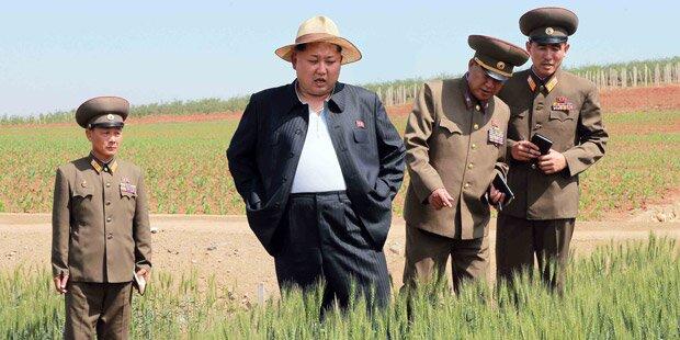 Nordkorea steht vor Jahrhundertdürre