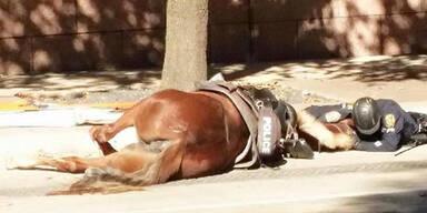 Polizist steht seinem Pferd im Todeskampf bei