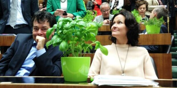 Grüner Machtkampf um EU-Kandidaten eskaliert weiter