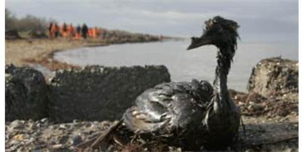 Ölpest bedroht auch benachbartes Meer