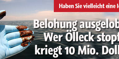 Wer Ölleck stopft, kriegt 10 Mio. Dollar
