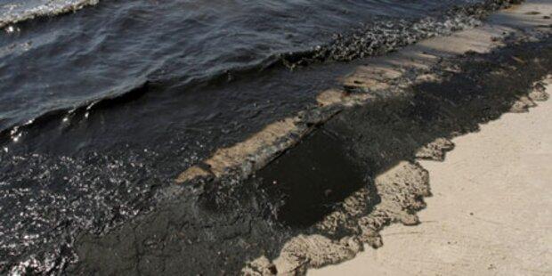 BP zweifelt an Ausmaß der Öl-Katastrophe