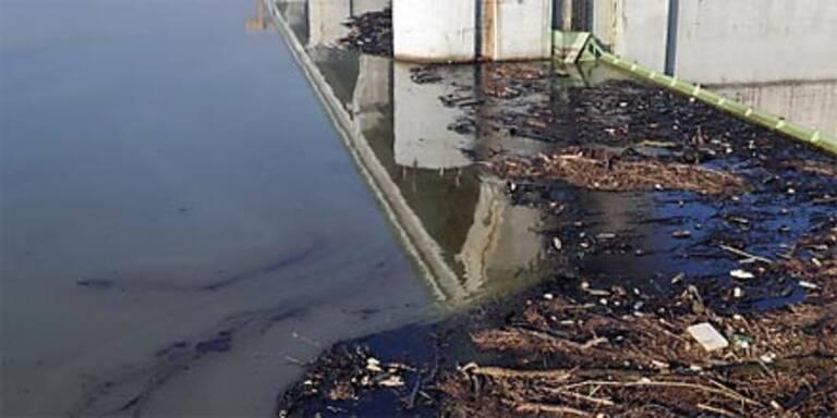Ölpest in Italien steuert auf Adria zu