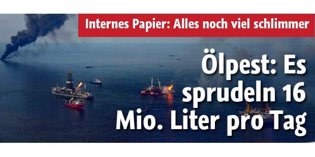 Täglich strömen bis zu 16 Mio. Liter Öl!