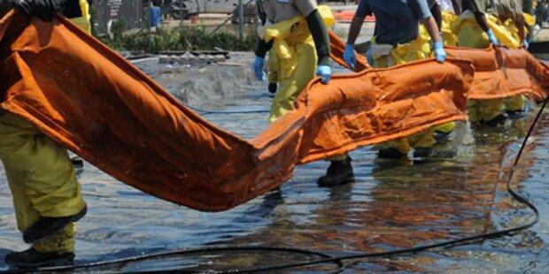 Häftlinge nehmen Kampf gegen Ölpest auf