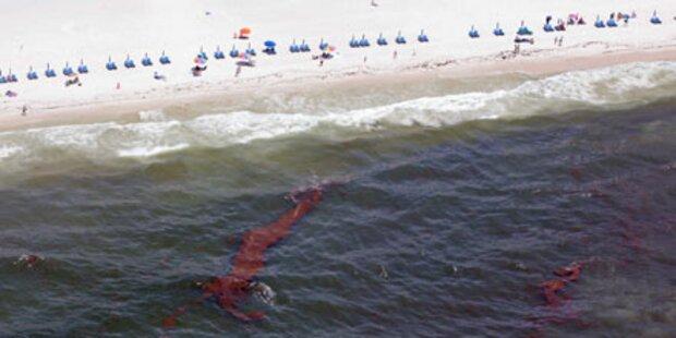 Ölpest erreicht Traumstrände von Florida