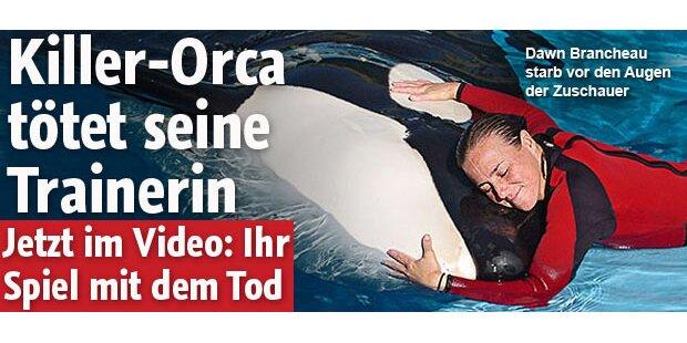 Killer-Orca tötet seine Trainerin
