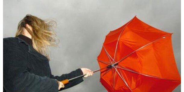 Stürme verursachen Millionen-Schäden