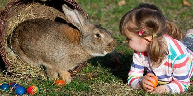 So feiern wir Salzburger Ostern
