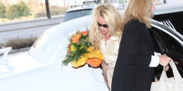 Pam in Wien gelandet