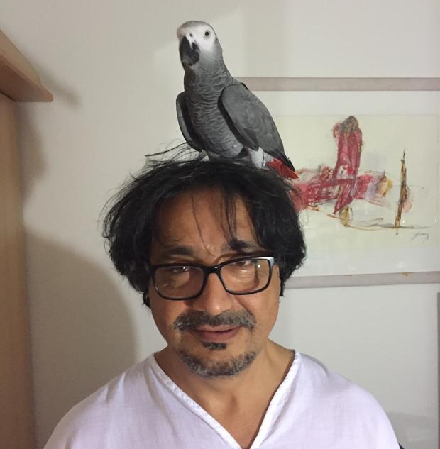 papagei2.jpg