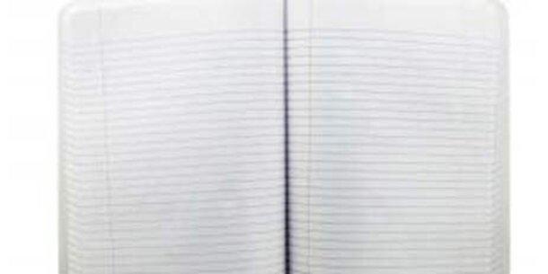 Finnen schließen Papierwerk in Hallein