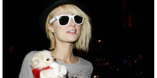 Paris Hilton kriegt keine Hundewelpen mehr