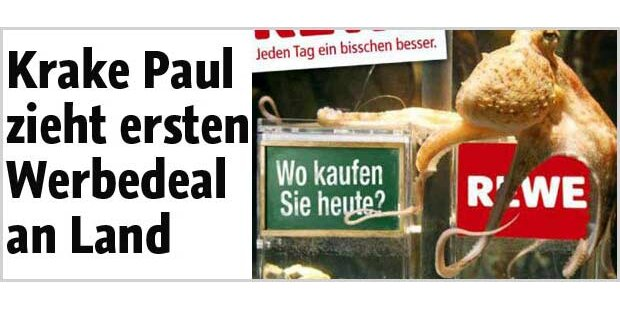 Krake Paul zieht 1. Werbedeal an Land