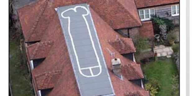 18-Jähriger malte Riesen-Penis aufs Dach