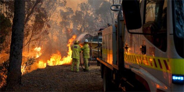 Buschbrände wüten im Westen Australiens