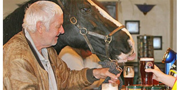 Biertrinkendes Pferd aus Pub verbannt