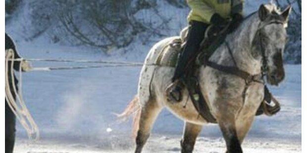 Perverser Tierqäuler missbrauchte Pferde