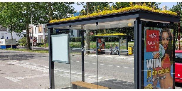 Begrünte Bushaltestellen in Salzburg